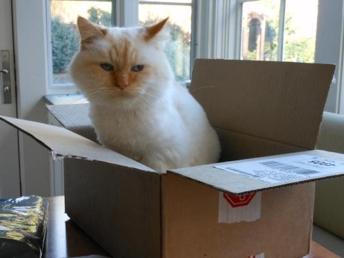 Como In A Box
